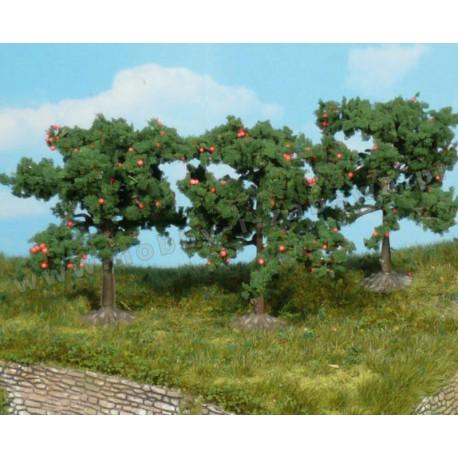 Heki 1160 owocująca jabłoń 8 cm 3 szt
