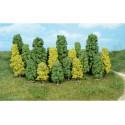 Heki 1318 drzewa liściaste 4-8 cm 20 szt