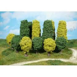 Heki 1321 drzewa liściaste 5-15 cm 24 szt