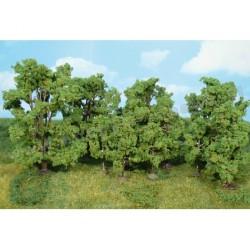 Heki 1414 las liściasty 14-16 cm 14 szt