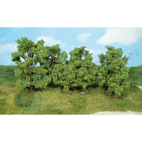 Heki 1415 las liściasty 6-13 cm 12 szt