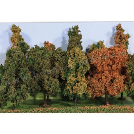 Heki 2000 jesienne drzewa liściaste 10-14 cm 10 szt